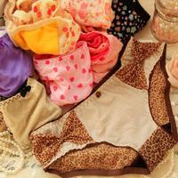 Free shipping Sweet and lovely lady underwear sexy leopard mesh underwear briefs
