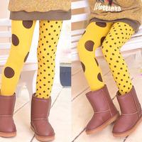 Trendy Kids Girls   Leggings Children Polka Dot Wool  Trousers Pant  Free  Shipping