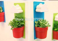 Rainy Pot decorative flower pots clouds flower pot wall-mounted flower bonsai fleshier plant pots