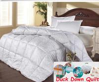 220 240 king size winter down comforter,winter duck comforter,4kg filler king duck down quilt,100% down quilt,down comforter
