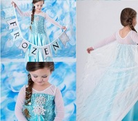1pieces retail, new 2014 girls dresses Frozen Elsa Anna costume princess dress cartoon costume kids clothes Free shipping