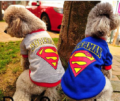 2014 autumn-winter Best Quality dog Cotton superdog Brand Sports dog clothes Yorkshire Teddy dog fbi pet dog clothing hoodies(China (Mainland))