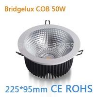 Factory Outlet  Bridgelux COB 50W LED Spotlights.225*95mm.Led Ceiling Light.85-260VAC.CE ROHS