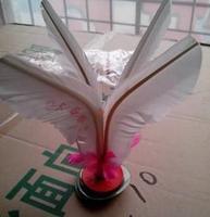 Dalian Spring flute shuttlecock feather shuttlecock kicking resistant removable bottom tendon children toy shipping