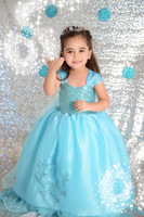 2015  Dress Custom made Movie Cosplay Dress Girl Dress  Princess blue Costume Easter Day Party Dress