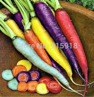 Vegetable seeds RAINBOW CARROT MIX-Seven crazy varieties-300 seeds Home & Garden Free shipping