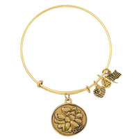 Alex and Ani faminy charm simply Expandable Wire  bracelets & bangles Good Luck as gift for men/women