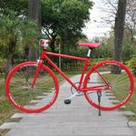 high quality carbon steel men good speed mountain bike casual bicycle trip bicycles recreation durable garden fashion man bikes(China (Mainland))