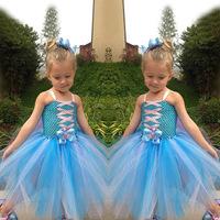 Frozen Elsa Princess Dress Gauze Dress Girl Christmas TUTU Frozen Dress 5pcs/Lot Blue White Guarantee Quality Free Shipping