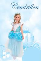 2014 Girls Cinderella Costume Princess Dress Kid Party Costume Fancy Helloween Dress