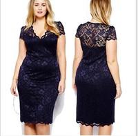 2014 Summer Women's Sexy Pencil Package Hip Dress Embroidered Sheath Knee-length Short Sleeve V-neck Dress
