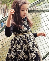 Aestheticism~ 5pcs/lot Korean girls new golden embroidery  dress pink black wholesale