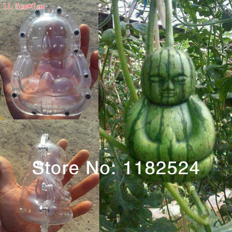 Pear / Melon Fruit Mold - deformação ferramenta de jardinagem(China (Mainland))
