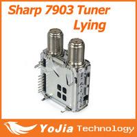 Original Sharp 7903 Tuner Lying Type 7306A openbox skybox F5 F5S V5S V8 V8S M3 M5 S10 S12 M3 F5 F5 orton403 satellite receiver