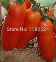 Free Shipping 100pcs String Banana Tomato Seeds fruit vegetables seeds