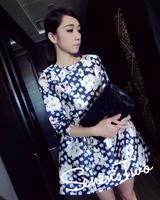 2014 women's autumn dress elegant small fresh half sleeve autumn one-piece dress a-line skirt