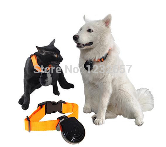 New Mini Pet Camera Dog Cat Collar Video Camera Pet's Eyes Auto Interval Record Free Shipping(China (Mainland))