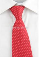 High Quality Men Narrow Necktie Neck Tie Zipper Zip Up Checkered 16