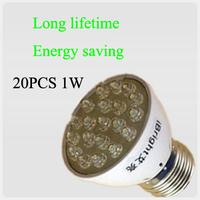 Free shipping AC180V-240V E27/E14/B22/MR16 1W LED spotlight with 20pcs Dome LED