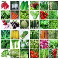 36 Packs Varieties 8000 Pcs seeds emergency survival heirloom vegetable garden seeds NON GMO organic 2014 Hot ! Home & Garden