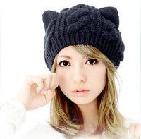 2014 Hot New female Hat Berets Korean winter wool cap twist Orecchiette Twisted Knitted cap Apparel  Knitting Warm Hat 5002