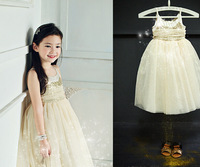 Fairy  Baby Girls High Quality  Sequined Sparkle Dance Party Dresses, Princess Boutique Wear  Wholesale 5pcs/lot, Free Shipping