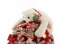 Plush Toy Bear The Polar Bear Doll Birthday Present for Girl
