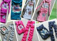Free Shipping beautiful embroidery Velvet tracksuit women brand Women sports suits homiesHoodies Pants set SIZE S-XL