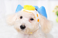 Mix sizes and colors order!wholesale 4pcs/lot S/M/L 100% acrylic pet dog warm winter blue dolphin caps