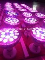 E27 Par led grow light 54w for hyroponics lighting