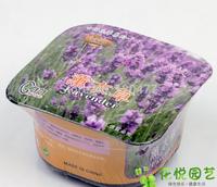 Weird flowers garden - Lavender - (box + fertilizer + seeds)