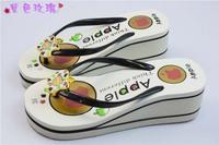 2014 Summer sandal and slippers woman platform flip flops slippers shoes soled slippers women high sandals flip-flops