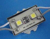 Waterproof SMD LED Module, 2pcs 5050 SMD LED, white color;