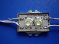 Waterproof super flux LED Module, 2pcs paranha LED,white color;