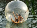 caminar agua bola Water Walking ball Walk on Water 2 M(Hong Kong)