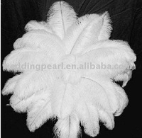 """wholesale 100pcs/lot 28-30"""" White Ostrich Feather Plume FREE SHIPPING"""