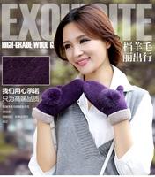 Gloves female women's gloves winter thermal gloves thickening wool mitten