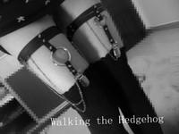 Fashion 2014 leather garter sexy  HARAJUKU chain legging garters harnmess free shipping