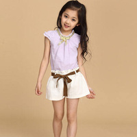 Children's clothing for girl 2014 summer child short-sleeve set child baby casual clothing