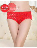 Ms. underwear wholesale modal fabric, lace lace triangular pants girls love printing