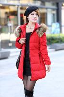 women winter coats 2014 New Brand Fashion Clothing Long Style Women Warm Down Coat Winter parkas coat