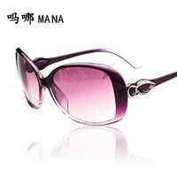 Hot sale Free Shipping with Original case Newest cat eye Classic brand len box glasses sunglasses women vintage C