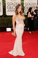 Sosia Bacon Lace Applique Satin Golden Globes 2014 Best Dressed Celebrity Red Carpet Dresses
