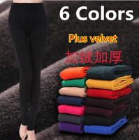 6 Colors 2014 New Autumn and Winter Women's Leggings Fashion Plus Thick Velvet Warm Seamlessly High Elasticity Cashmere Leggings