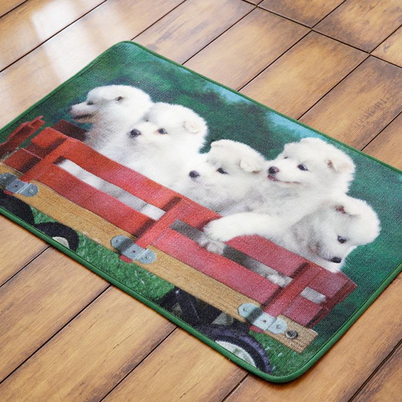 Modern fashion entrance bathroom pet hearthrug mat doormat rectangle(China (Mainland))