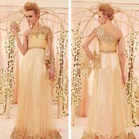 Champagne Tulle vestido de festa longo vermelho party evening elegant evening dresses 2014 formal dresses long evening gowns
