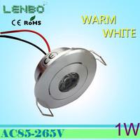 HOT!!! 2pcs downlights leds  1w 255LM sandblasting aluminium led downlight celing light cool/warm white
