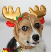 Pet Dog Warm Clothing Dog Winter Hats Elk Antlers Cute Cat Dog Grooming Hats Christmas Pet Hats Pet Supplies S/M/L