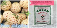 100 White strawberries and home special fertilizer plants potted flowers