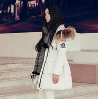 High Quality! 2014 New Korean Winter Fashion Women Raccoon Fur Hooded Badge Deco Slim Down Coat Parkas F16498